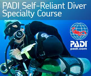 PADI Self-Reliant Diver Brisbane
