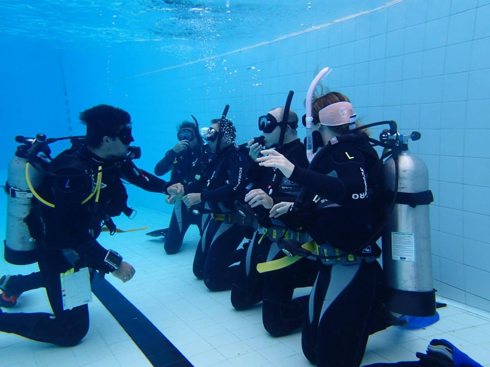 Learn to Dive Gold Coast